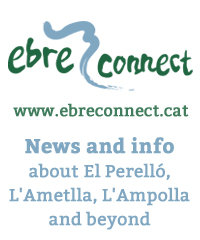 Ebreconnect